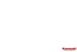 Kawasaki Z125 PRO 2016